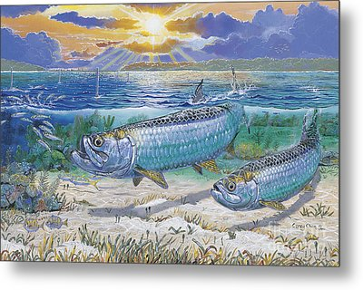 Tarpon Cut In0011 Metal Print