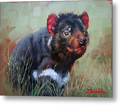 Tasmanian Devil Metal Print by Margaret Stockdale