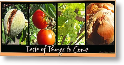 Taste Of Things To Come - Photography - Collage Metal Print
