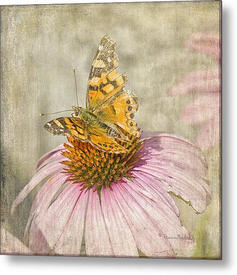 Tattered Butterfly Metal Print