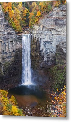 Taughannock Falls In Autumn Metal Print