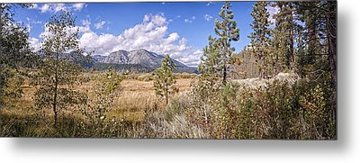 Metal Print featuring the photograph Taylor Creek Panorama by Jim Thompson