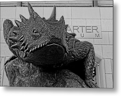 Tcu Horned Frog Black And White Metal Print