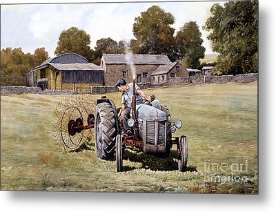 Te20-fergy In The Fields Metal Print by Anthony Forster