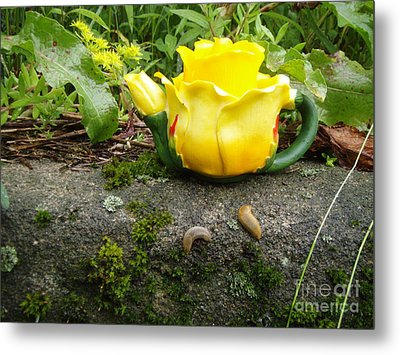 Metal Print featuring the photograph Tea For Two by Kristine Nora