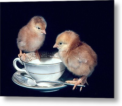 Metal Print featuring the photograph Tea For Two by Paul Miller