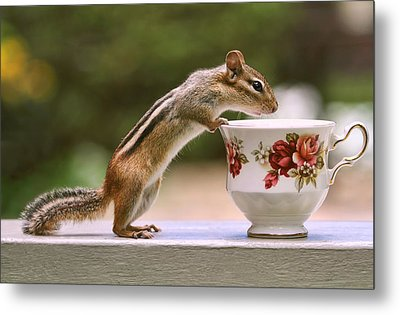 Tea Time With Chipmunk Metal Print