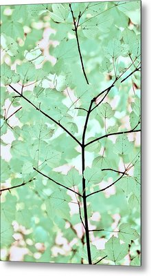 Teal Greens Leaves Melody Metal Print by Jennie Marie Schell