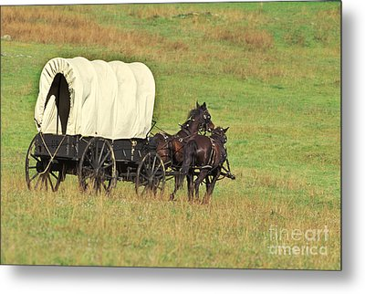 Team Of Horses Pulling A Covered Wagon Metal Print by Ron Sanford