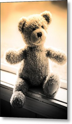 Metal Print featuring the photograph Teddy B by Aaron Berg