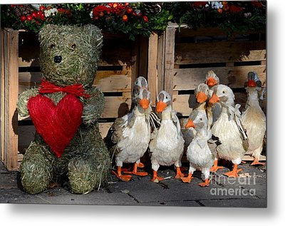 Teddy Bear With Flock Of Stuffed Ducks Metal Print by Imran Ahmed