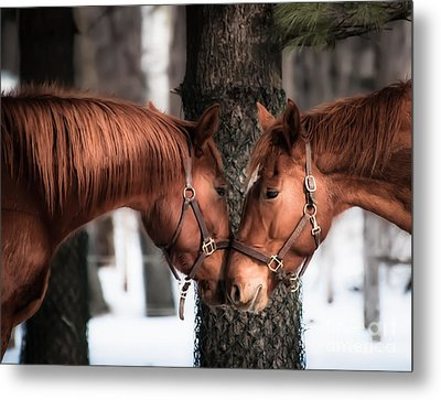 Tenderness Metal Print
