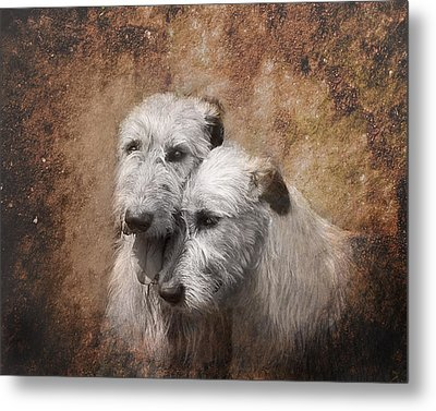 Tenderness Metal Print by Mary OMalley