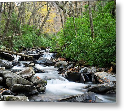 Tennessee, Great Smoky Mountains Metal Print by Jamie and Judy Wild