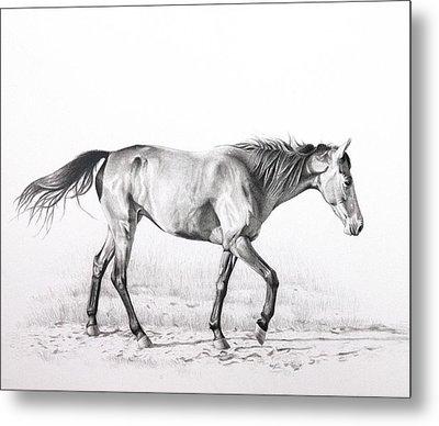 Tennessee Walking Horse Metal Print by Karen Broemmelsick