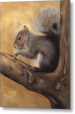 Tennessee Wildlife - Gray Squirrels Metal Print
