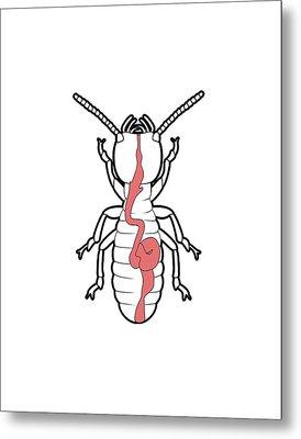 Termite Digestive System Metal Print by Claus Lunau