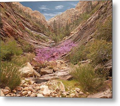 Terrace Canyon Metal Print by Alan Socolik