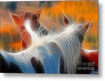 Teton Horses Metal Print by Clare VanderVeen