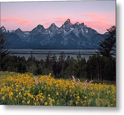 Teton Spring Metal Print by Leland D Howard