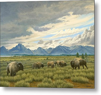 Tetons-buffalo  Metal Print