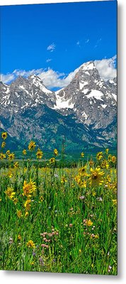 Tetons Peaks And Flowers Center Panel Metal Print by Greg Norrell