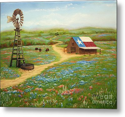 Texas Countryside Metal Print by Jimmie Bartlett