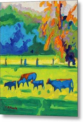 Texas Cows At Sunset Oil Painting Bertram Poole Apr14 Metal Print by Thomas Bertram POOLE