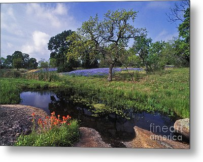 Texas Hill Country - Fs000056 Metal Print