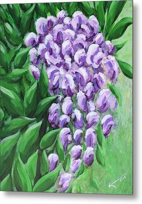 Texas Mountain Laurel Metal Print