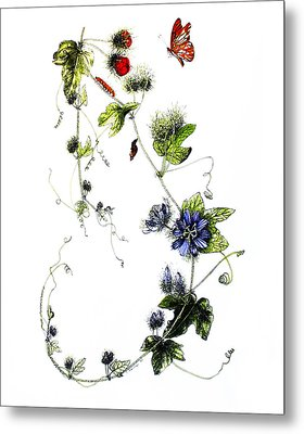 Texas Passion Flower Metal Print by Sue Sill