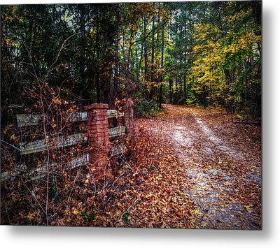 Texas Piney Woods Metal Print by Linda Unger
