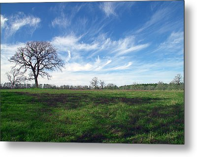 Texas Sky Metal Print by Brian Harig