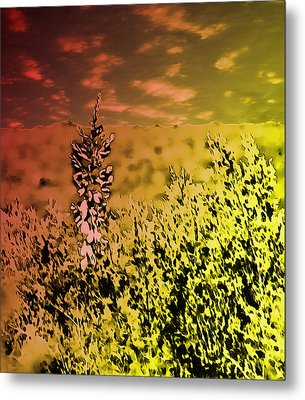 Texas Yucca Flower Metal Print by Bartz Johnson