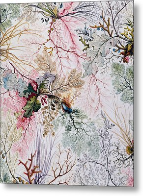 Textile Design Metal Print by William Kilburn
