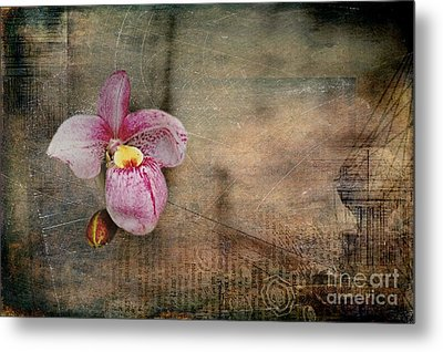 Metal Print featuring the photograph Textured Orchid by Vicki DeVico