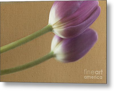 Textured Purpletulip Metal Print