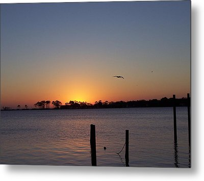 Thanksgiving Sunrise Metal Print by Michele Kaiser