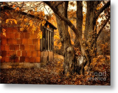That Which Defines Us Metal Print by Lois Bryan