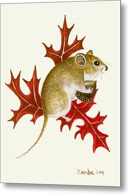The Acorn Mouse Metal Print