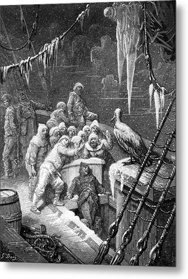 The Albatross Being Fed By The Sailors On The The Ship Marooned In The Frozen Seas Of Antartica Metal Print