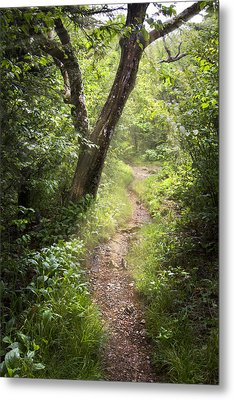 The Appalachian Trail Metal Print by Debra and Dave Vanderlaan