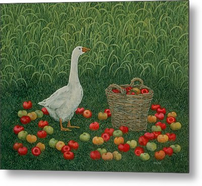 The Apple Basket Metal Print by Ditz