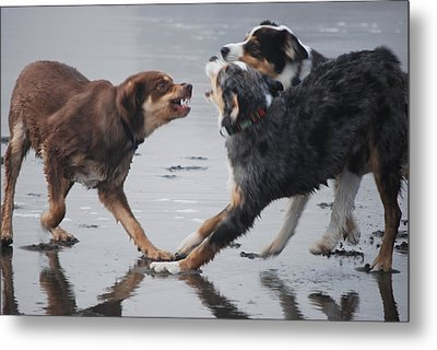 The Argument Metal Print