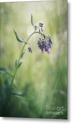The Arrival Of Spring Metal Print