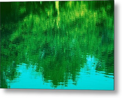 Metal Print featuring the photograph Art Of Nature by Kellice Swaggerty