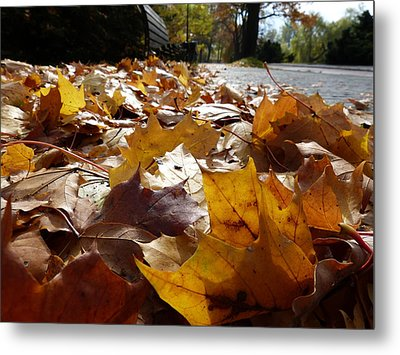 Metal Print featuring the photograph The Autumn Carpet by Janina  Suuronen