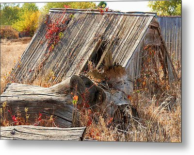 Metal Print featuring the photograph The Autumn Of Nebraska by Bill Kesler