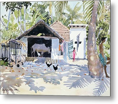 The Backwaters, Kerala, India Metal Print by Lucy Willis