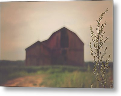 The Barn Daylight Version Metal Print by Carrie Ann Grippo-Pike